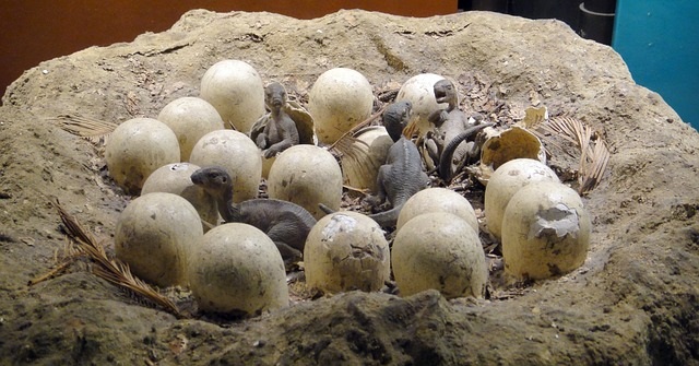 Nest of eggs with dragons hatching from them.